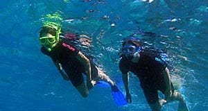 snorkeling tips on a cruise