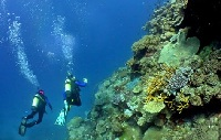 4 Best Places to Go Scuba Diving on Your Caribbean Cruise