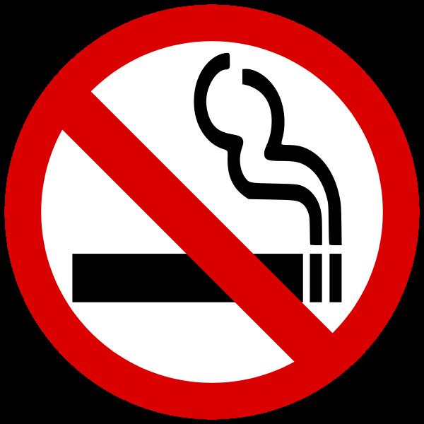 Norwegian Cruise Line Bans Smoking in Cabins