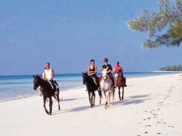 horseback-riding on cruise caribbean