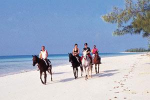 horseback-riding on cruise caribbean