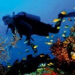 The Best Scuba Diving Places in the Caribbean