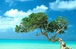exotic cruise destination