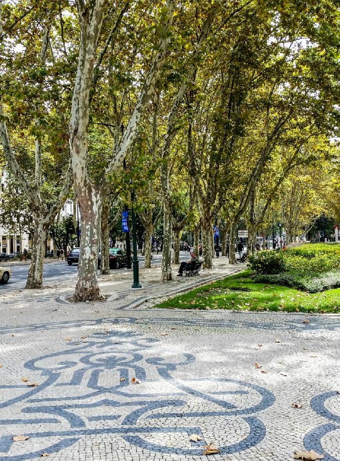 More mosaic sidewalks in downtown Lisbon
