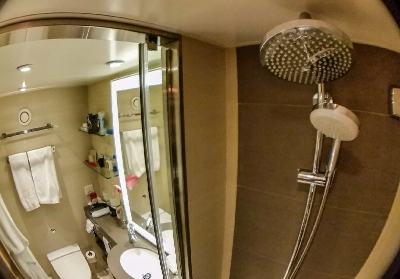 shower and bathroom in suite of viking torgil