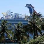 Man Cruises 1,000 Nights on the Same Cruise Line