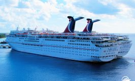 Cruises to Cozumel: Fun Cultural Tours to Experience