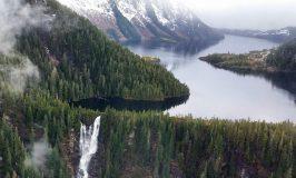 6 Cruise Passengers Swim to Safety After Floatplane Crashes in Alaska
