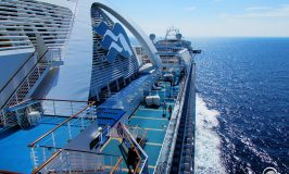 Best 5 Princess Cruise Ships for Your First Cruise
