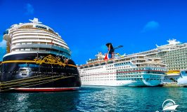 Reasons to Take Cruises on Different Cruise Lines
