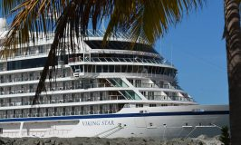 Questions to Ask Before Asking About Shore Excursions on Cruises
