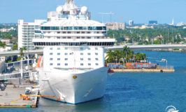 Port Everglades Cruise Ship Terminals, What You Need to Know