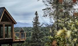 Princess Cruises Adds Treehouse Overlooking Denali National Park