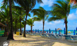 10 Best Beaches in Cozumel