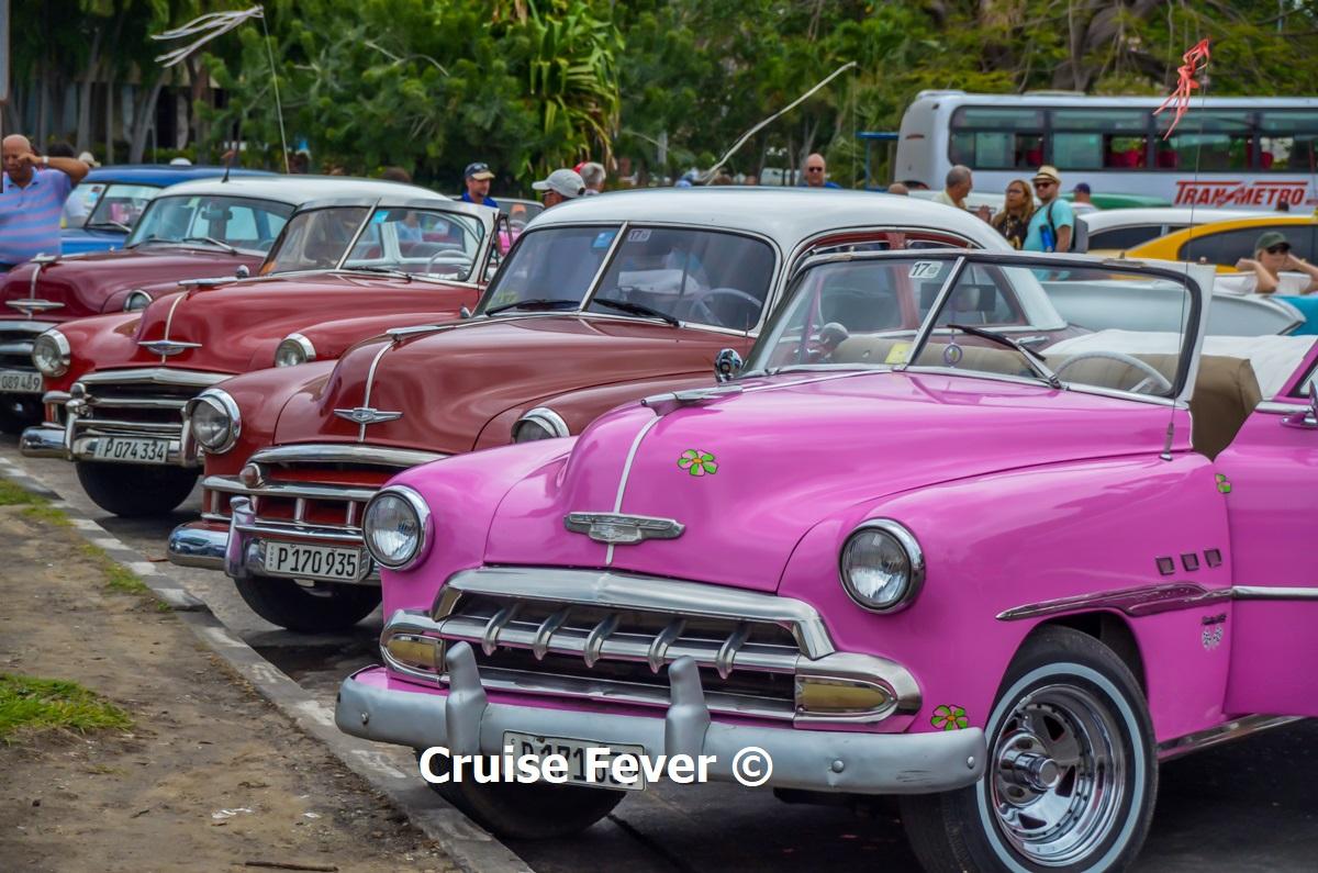 classic cars in cuba on cruise