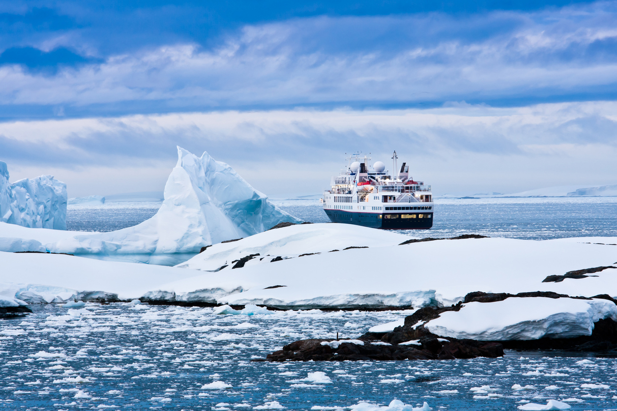 In Search of Polar Bears – 5 Epic Arctic Cruises (cruisefever.net)
