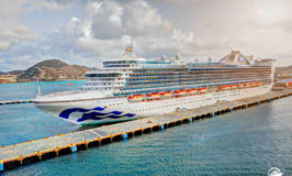 Princess Cruises Announces Ship Deployments for 2020 Cruises