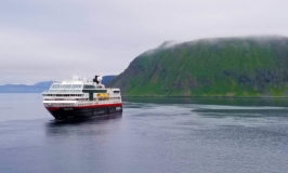 Cruise Line Will Power Cruise Ships with Dead Fish