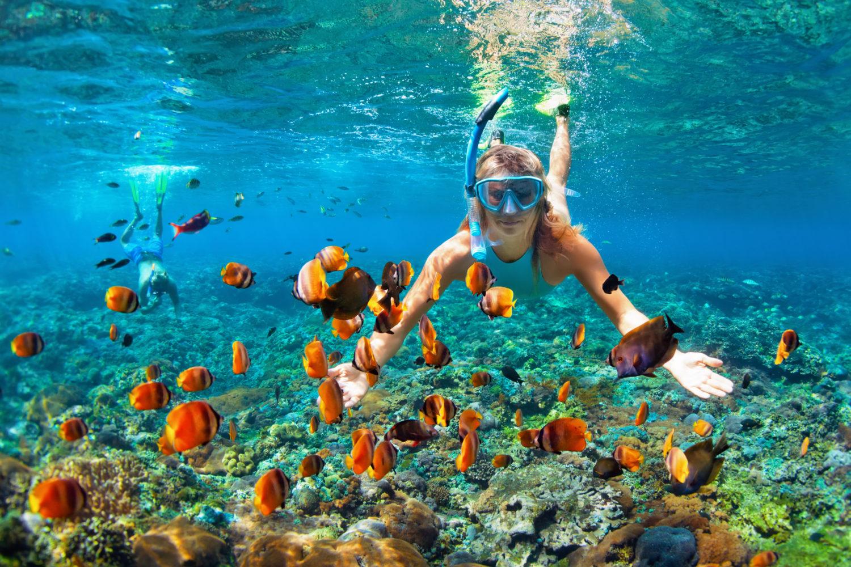 best caribbean islands for snorkeling