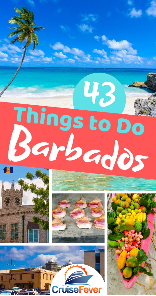 Barbados: 43 Amazing Things to Do While on a Cruise (2019)