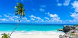 beach barbados island