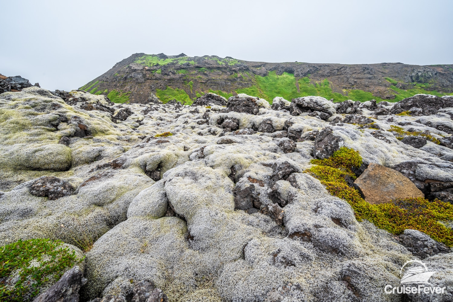Icelandic volcanic rock covered in moss